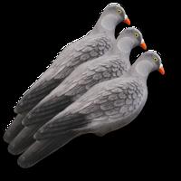 Billede af 3 lokkeduer fra Lucky Duck
