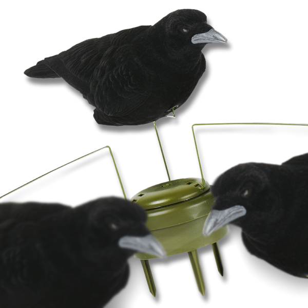 Billede af Triple Play Motion Crows – Lucky Duck
