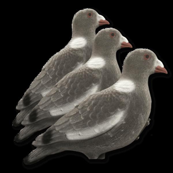 Billede af 3 stk lokkeduer med flock til duekarrusel